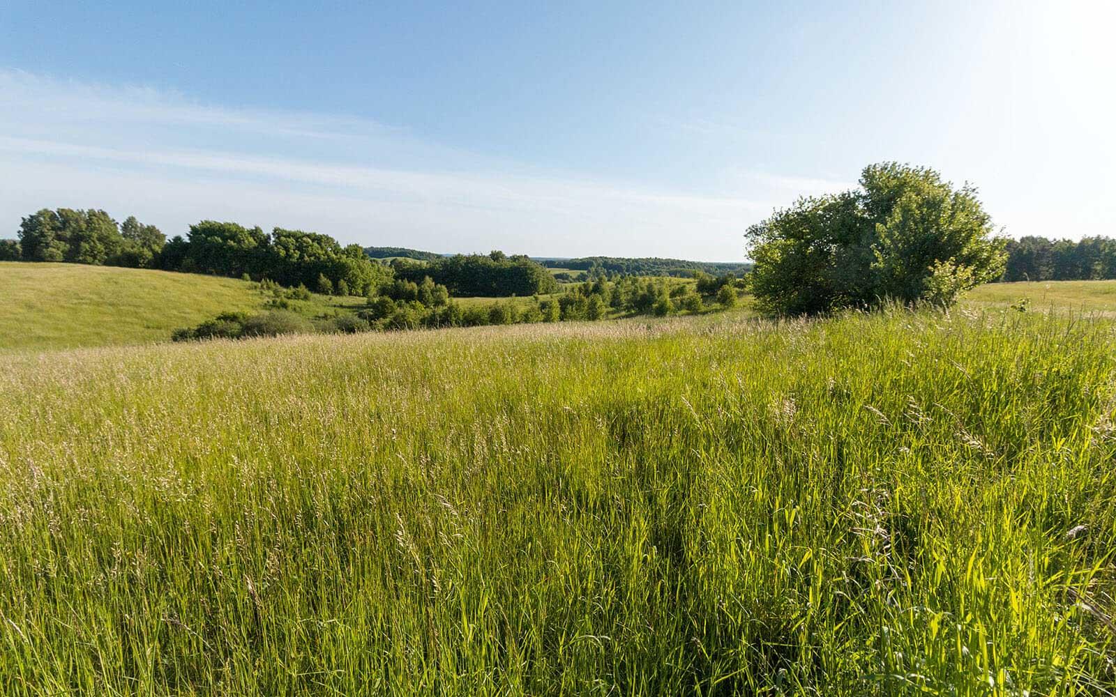 Piękny Krajobraz Drawskiego Parku Krajobrazowego