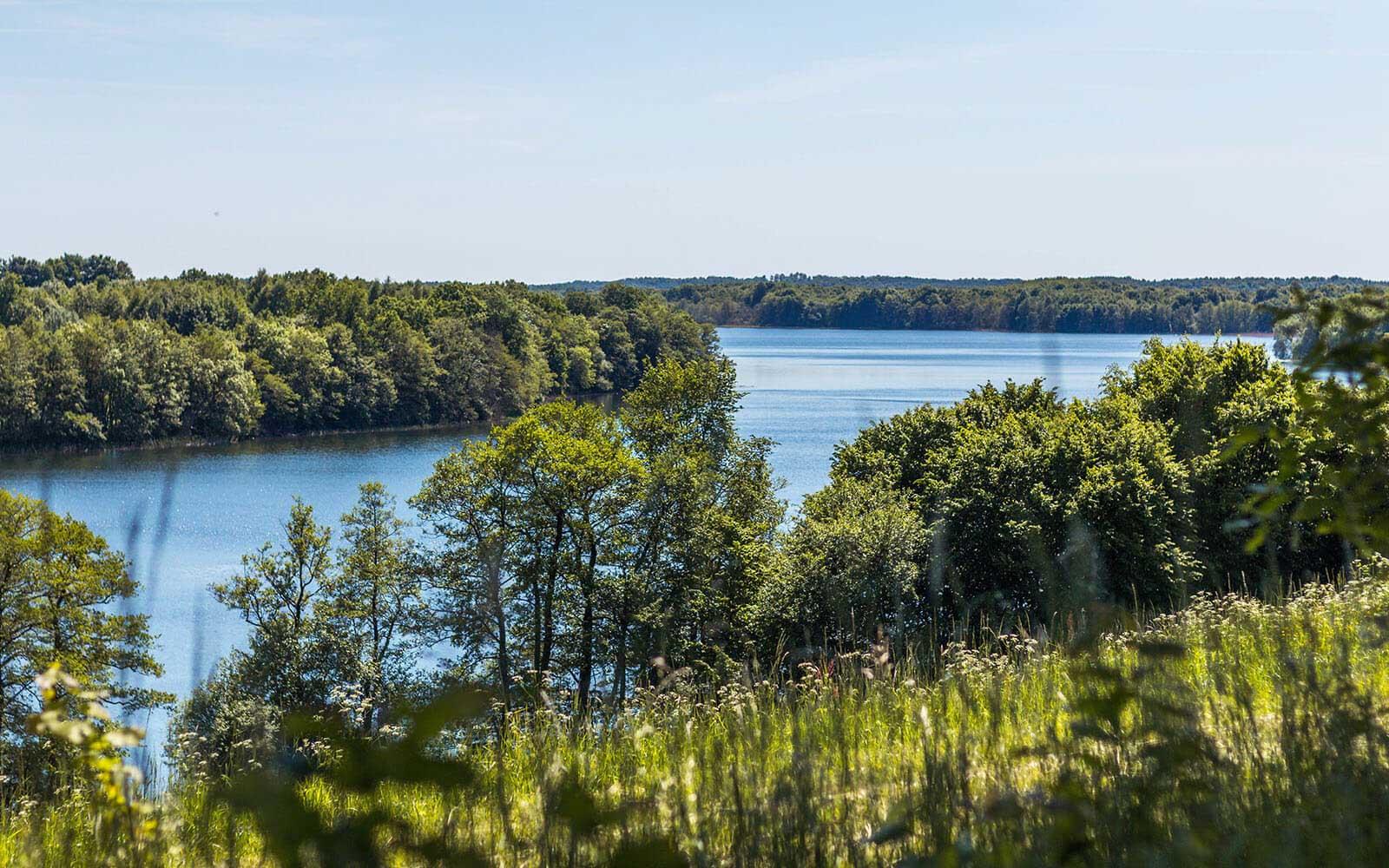 Punkt widokowy wdrawskim parku krajobrazowym