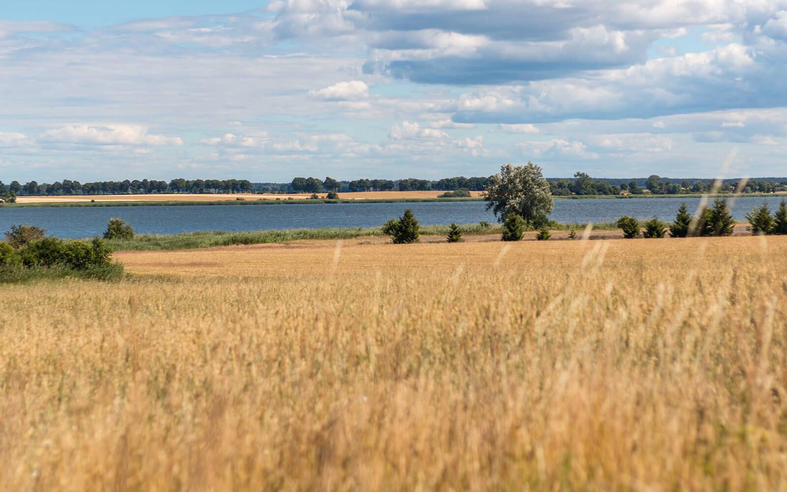 Krajobraz Wolina widziany zścieżki rowerowej