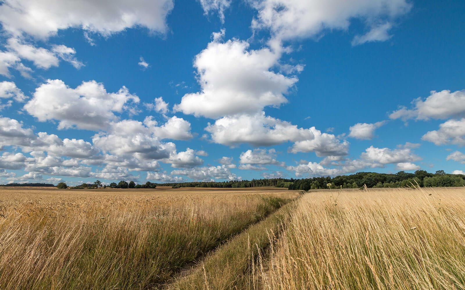 Krajobrazy nawyspie wolin koło wsi Mokrzyca Wielka