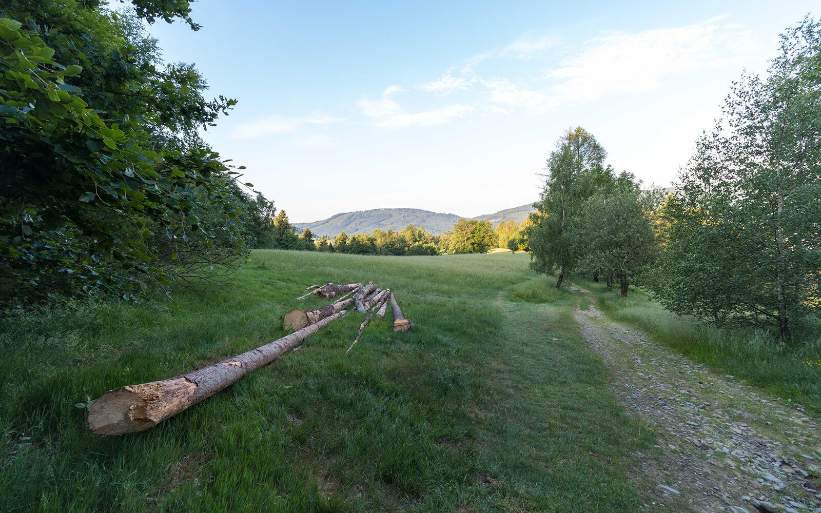 Zielony górski szlak pieszy oporanku wBrennej