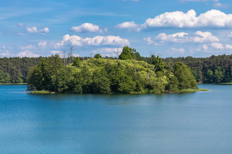Krajobraz Drawieński Park Narodowy
