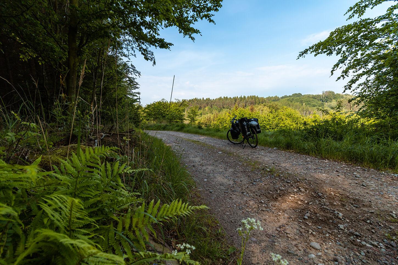 Ińskim Park Krajobrazowy szlaki rowerowe