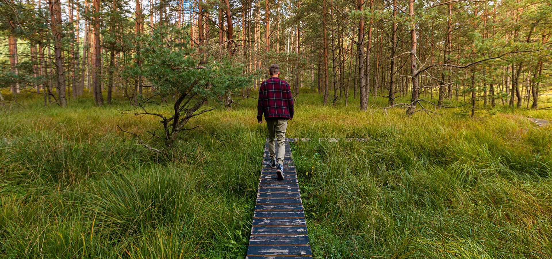 Park Narodowy Bory Tucholskie – Odpoczynek w otoczeniu lasów i jezior