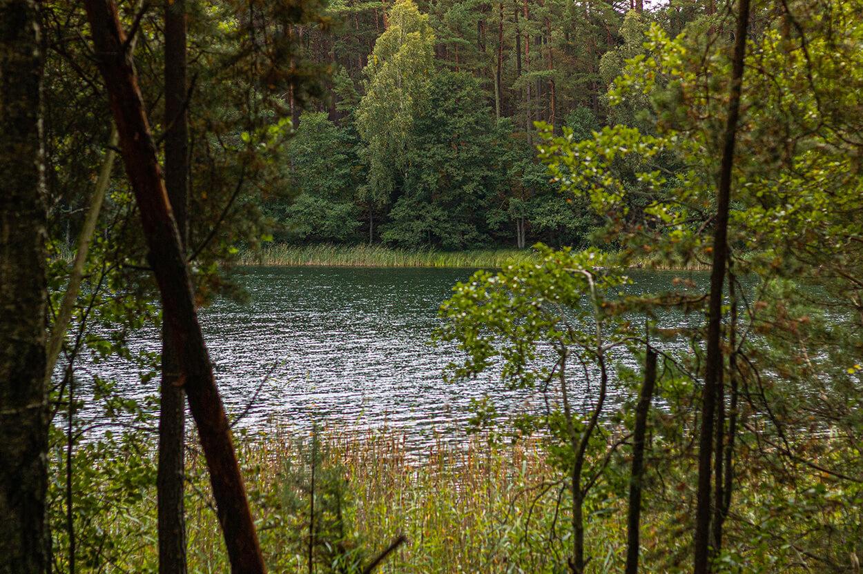 Park Narodowy Bory Tucholskie jeziora