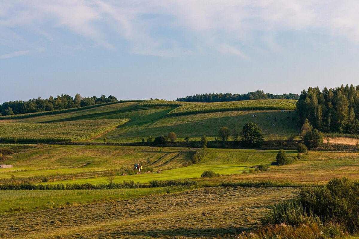 Kaszuby krajobraz