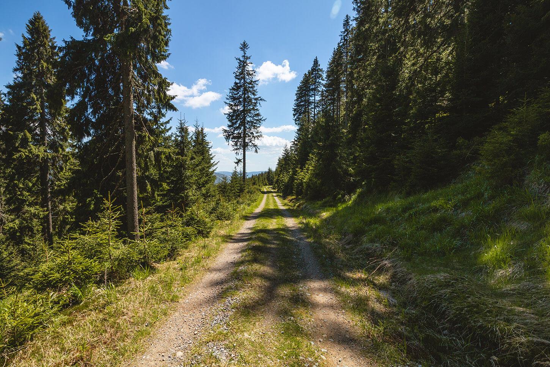 Szlaki wŚnieżnicki Park Krajobrazowy