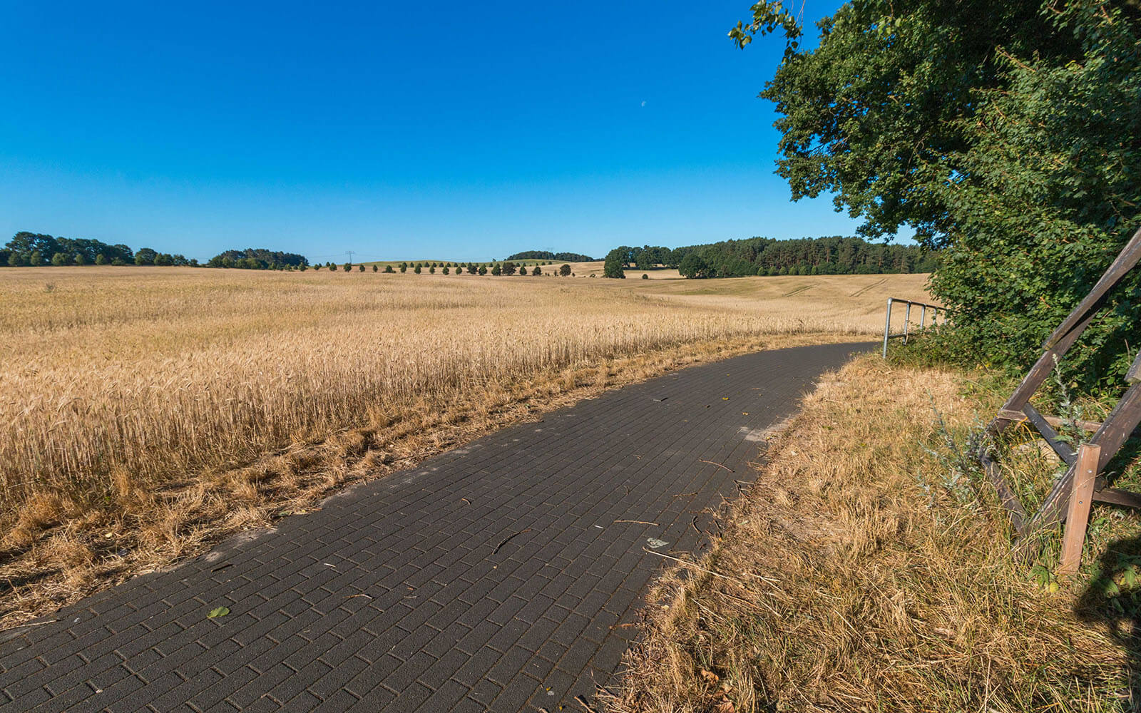 ścieżka rowerowa nawyspie Uznam